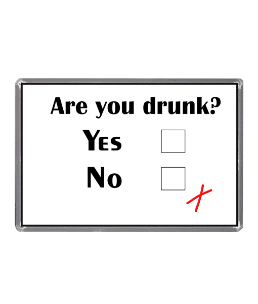 Are You Drunk? – Magnet