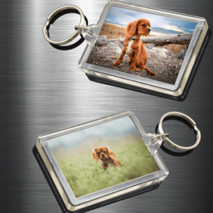 Birthday Gifts Personalised Photo Keyrings