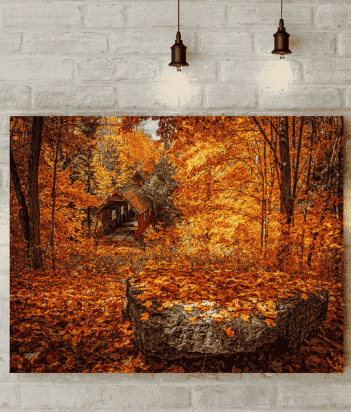 Autumn Trees Canvas Picture