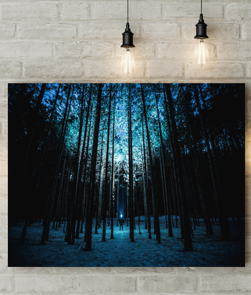 [tag] Night Shining Forest Picture Canvas