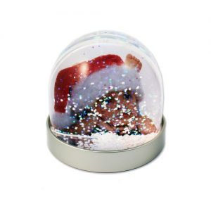 Christmas Photo Snow & Glitter Globes