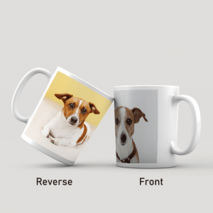 Birthday Gifts Twin Photo Mug