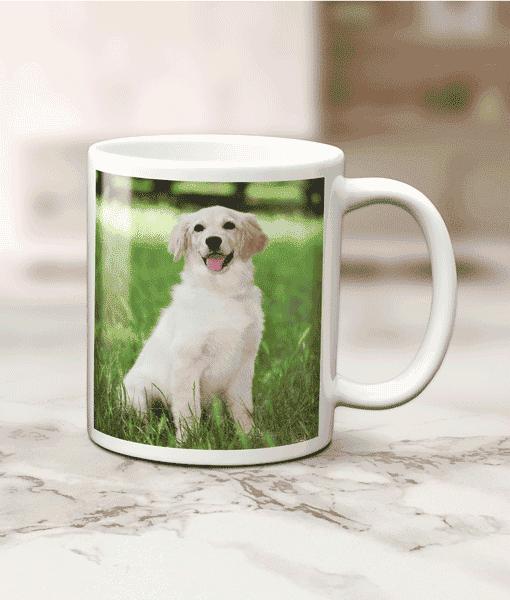 Single Photo Mug