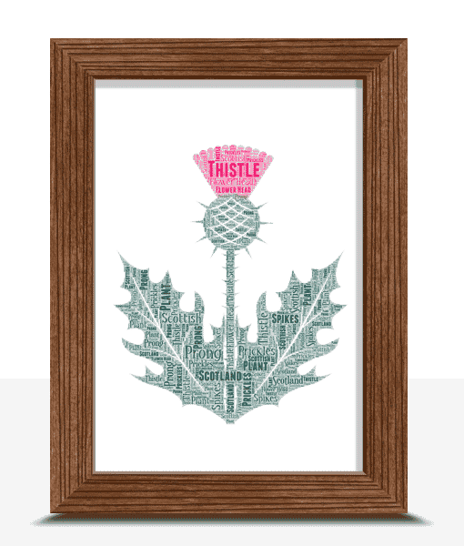 Personalised Scottish Thistle Word Art Print