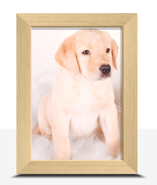 Photo Gifts 6″ X 4″ Framed Photo Print